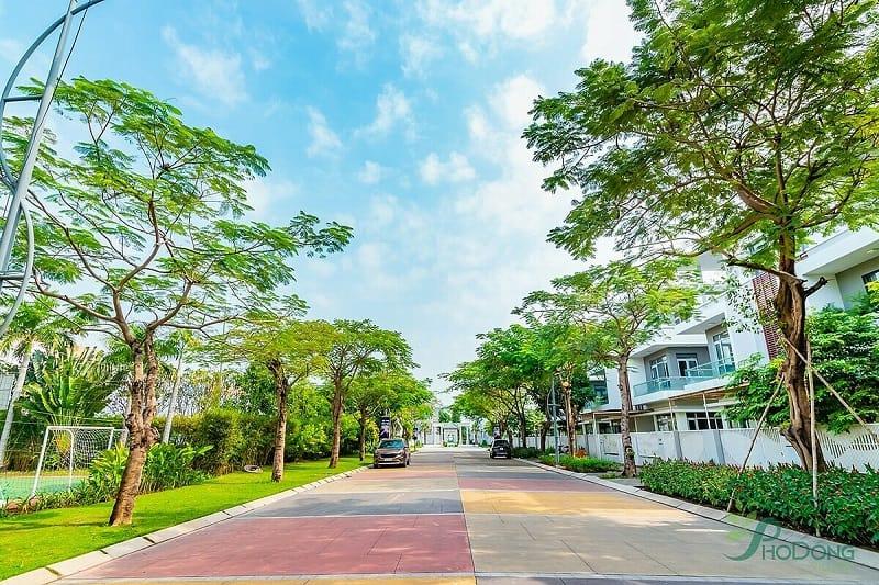 Pho Dong Village-đường bê tông màu